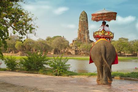 고대 도시 Ayutaya, 태국의 코끼리를 타고 투어에 관광객 스톡 콘텐츠