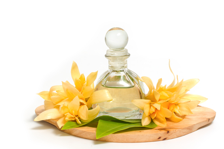 absolute: Essential aroma oil with champaka flower