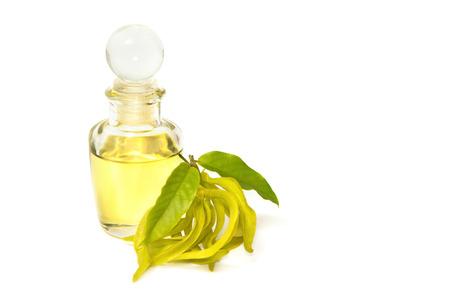 ylang-ylang aroma massage oil Banco de Imagens - 30850189