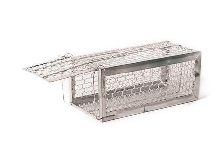 rata: Ratonera (jaula de ratas) aislado en fondo blanco Foto de archivo