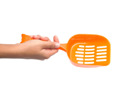 plastic scoop: Hand with plastic scoop for cleaning cat litter