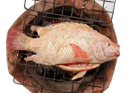 oreochromis niloticus: Grilled red nile tilapia fish on charcoal stove Stock Photo