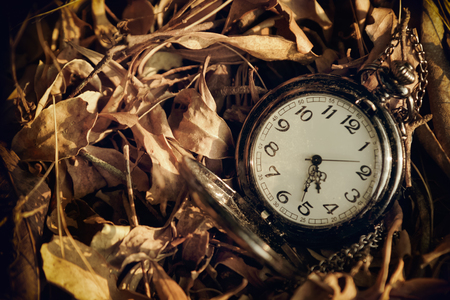 timekeeping: Antique pocket watch against the background of dried leaves