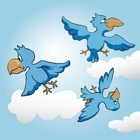 chirp: blue birds