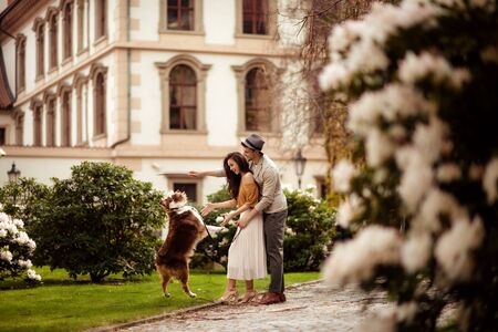 Female and male couple have walk outdoor with their favourite dog, train it, stroll in open air across green path and ancient builduing in background. People, leisure and recreation concept Stock Photo