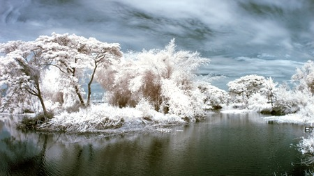 Canoes and wilderness were photographed with near infrared.