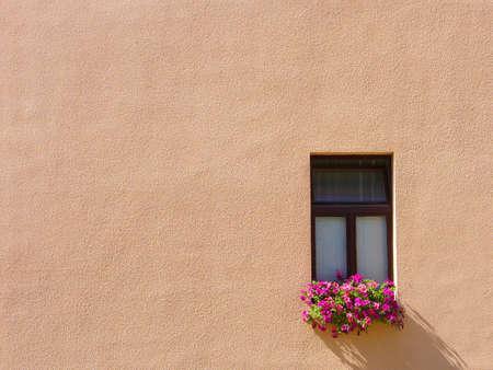 finestra con fiori droping ombra