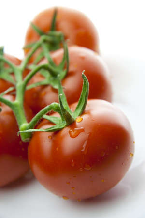 Red Tomatoes with green branches on white Stock Photo