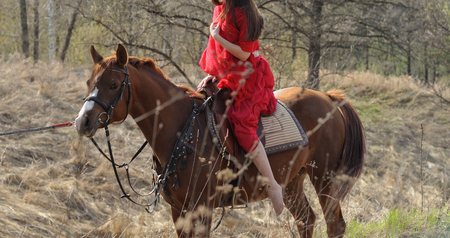 Cropped image of woman in red shawl and dress at chestnut purebred arabian horse
