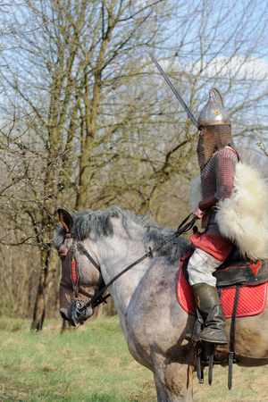 Cropped image of brave woman in armor on a purebred belgian horse, holding a sword Фото со стока
