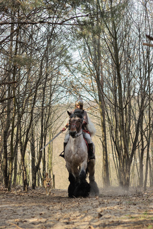 Brave woman in armor on a purebred belgian horse holding a sword with dog