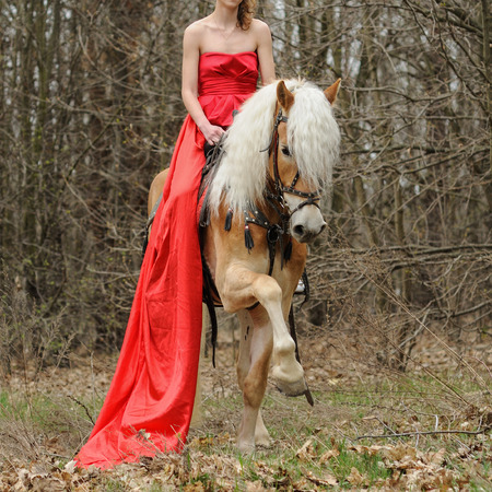 Cropped image of woman in red dress on a purebred haflinger horse