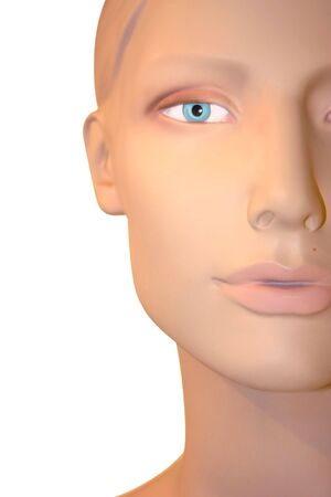 A plastic mannequin looking at you. photo