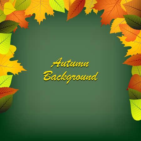 Autumn leaves on a green background vector eps 10
