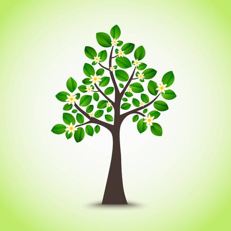 flowering: Spring flowering tree with green leaves background vector Illustration