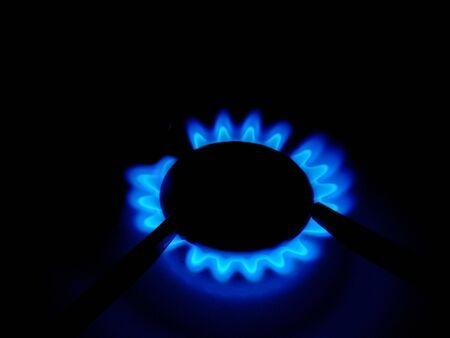 gas cooker: Flor de la llama de una cocina de gas de una casa en la oscuridad