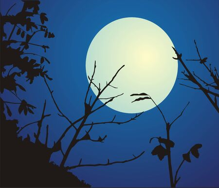 The figure representing a night landscape: black branches of trees on a background of the white-yellow full moon and the dark blue sky. Illustration