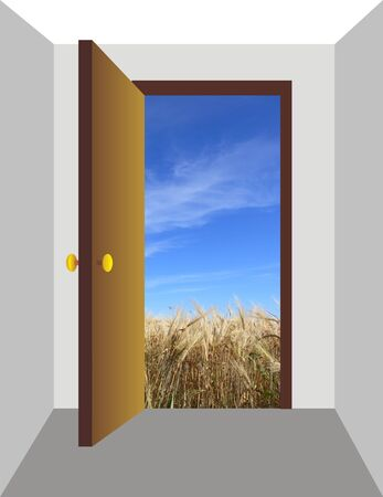 The drawn open door from which the photographic field of a rye is visible Stock Photo - 1640923