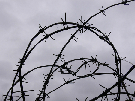 Barbed wire on a background of the rainy sky photo
