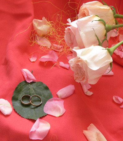 fidelity: On a pink fabric showered petals of roses. On one green leaf wedding rings lay. Sideways three light pink roses. Very romantically. Stock Photo
