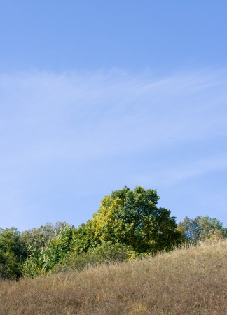 specificity: Beautiful slope on a background of the blue sky. A fine background.