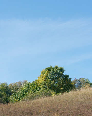 specificity: All paints of autumn. A landscape on a theme about seasonal specificity. Stock Photo