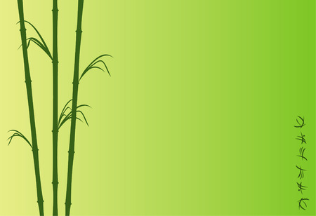 asiatic: The illustration representing the stylized bamboo and abstract hieroglyphs on a green background Illustration