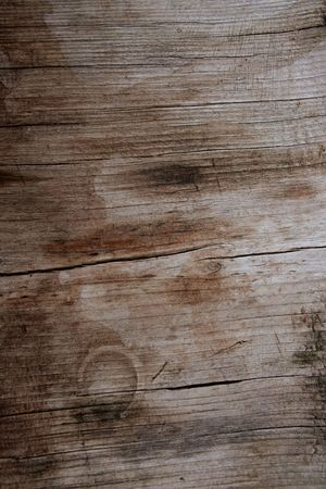 nonuniform: Highly detailed texture of a wooden surface