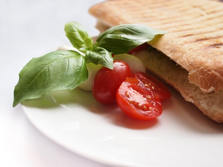 focaccia: Close up of an italian lunch with a panini sandwich with a side salad including tomatoes, mozzarella cheese and basil leaves.