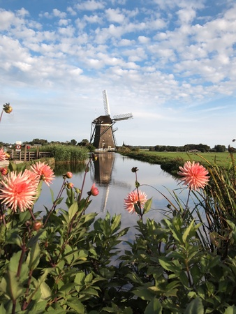 Typical spring landscape in Holland with a windmill and flowers.