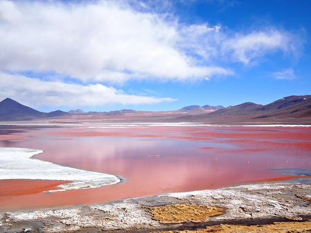 avaroa: The Red Lagoon, or Laguna Colorada, on the Altiplano near Uyuni inside Eduardo Avaroa National Reserve in Bolivia at 4300 m above sea level.  The red color of the water is caused by sediments and algae. The white part is borax salt.