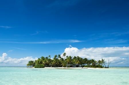 ランギロア環礁、タヒチ archipelago 太平洋のフランス領ポリネシアの島内部ブルー ラグーンで無人または砂漠の島です。