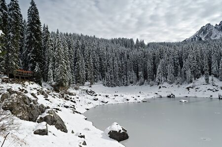 Carezza Lake  Karersee  surrounded by pine trees covered with snow in winter in the Dolomites in Italy  photo