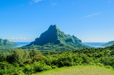 lookout: Overview over the green jungle on Rotui mountain with Cook's Bay and Opunohu Bay on the tropical pacific island of Moorea, near Tahiti in French Polynesia.