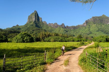 road cycling: Female tourist cycling on a dirt road with Rotui mountain in the background on the tropical island of Moorea near Tahiti in French Polynesia.