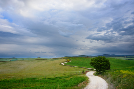 road and path through: A winding strada bianca dirt road with many curves through the green fields in a landscape in Tuscany with a tree along the path and beautiful clouds in the sky leading to a destination in the distance.This image can be used as an analogy to reaching your