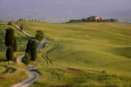 agriturismo: The white gravel road (or strada bianca) to Terrapille agriturismo with cypress trees alongside it in the evening light in the Valdorcia (Orcia Valley) near Pienza in Tuscany, Italy. The road is also called Gladiator Road because the movie The Gladiator w Stock Photo