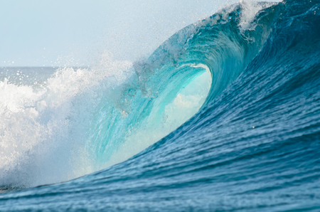 wave: A big barrel wave break in the Pacific Ocean, perfect for surfing.