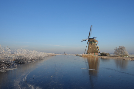 A typical winter landscape in the Netherlands with a windmill and hoar frosted reeds along the ice of a frozen river on a beautiful clear sky day in the dutch countryside near Kinderdijk.