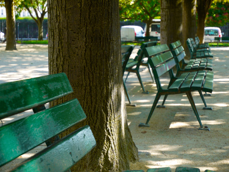 symetry: Green wood park benches in Paris. Stock Photo