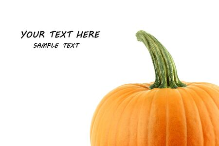 A big orange pumpkin on a white background, with text space photo