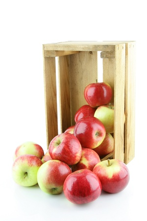 Red Elstar apples in a wooden crate, on a white background  photo