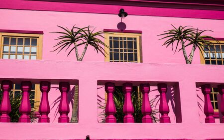 Pink house front with palm tree shadows