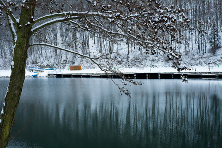 icey: Pond surrounded by trees covered with snow Stock Photo