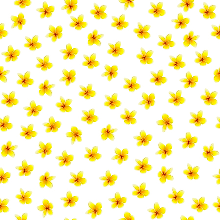 Cute Floral pattern in the small flower. Motifs scattered random. Seamless vector texture. Elegant template for fashion prints. Printing with very small light flowers. White background.