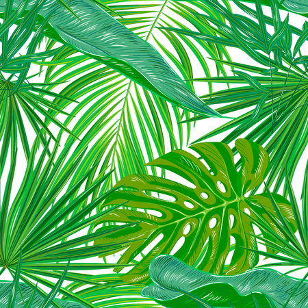 Green palm leaves on the white background. Vector seamless pattern. Tropical illustration. Jungle foliage.