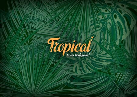 Bright tropical background with jungle plants. Vector illustration.