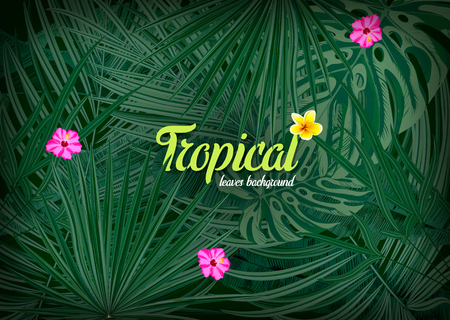 Bright tropical background with jungle plants. Vector illustration Illustration
