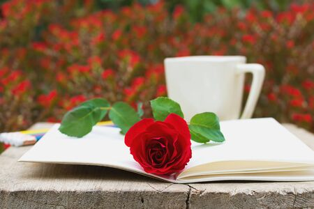 red rose bokeh: The open book and a red rose, coffee mug on bokeh flowers background. Stock Photo