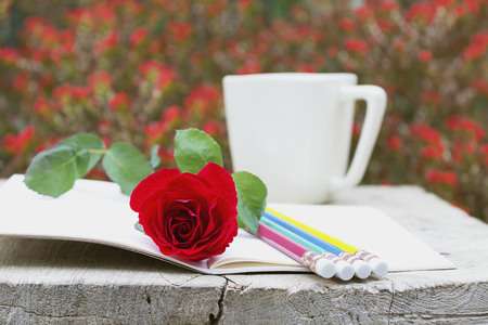 red rose bokeh: The open book and a red rose, pencil, coffee mug on bokeh flowers background.